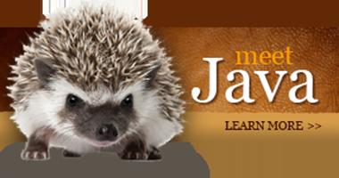 Meet Java